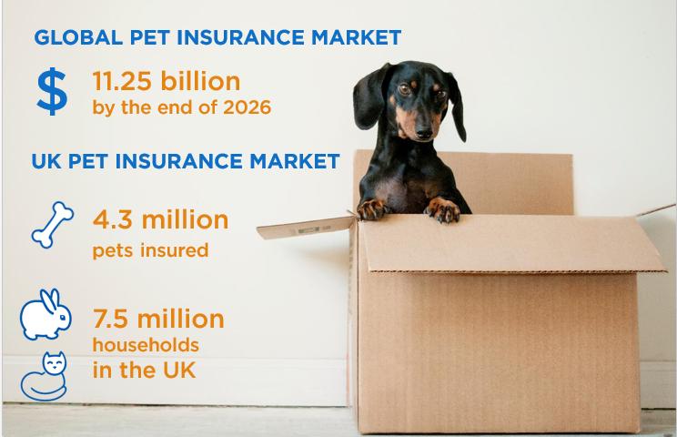 Pet-insurance_landing